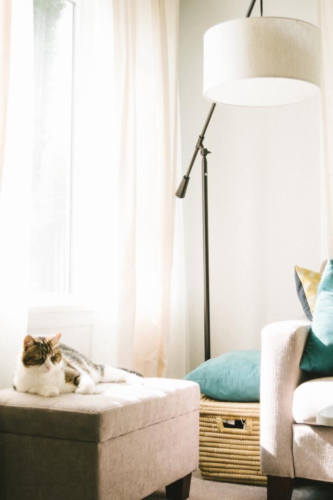 Living area showing ottoman, big basket and pillows